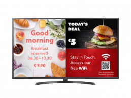 TV with TRIAX Info Channel